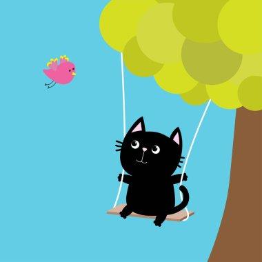 Cat ride on swing.