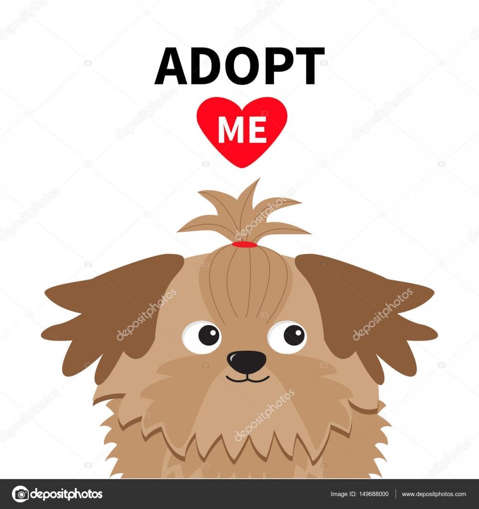 Adopt Me Shih Tzu Dog Stock Vector Worldofvector 149688000
