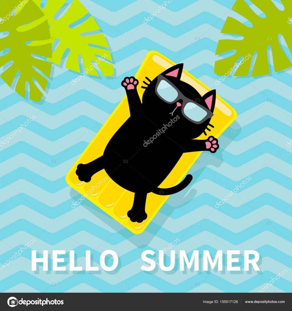 chat flottant sur les matelas d eau de piscine image vectorielle worldofvector 155517126. Black Bedroom Furniture Sets. Home Design Ideas
