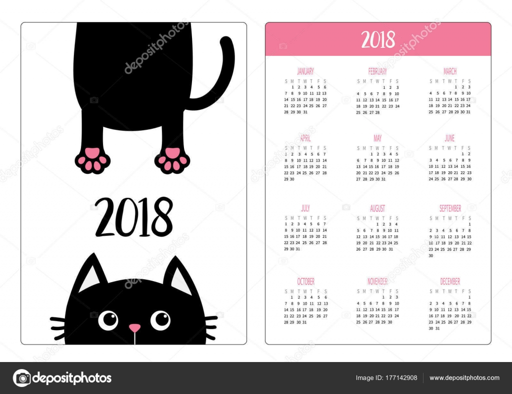 pocket calendar 2018 year black cat vector illustration stock vector