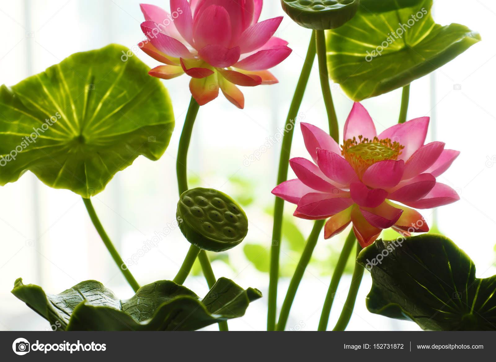 Pot de fleur lotus argile art rose photographie xuanhuongho 152731872 - Image fleur de lotus ...