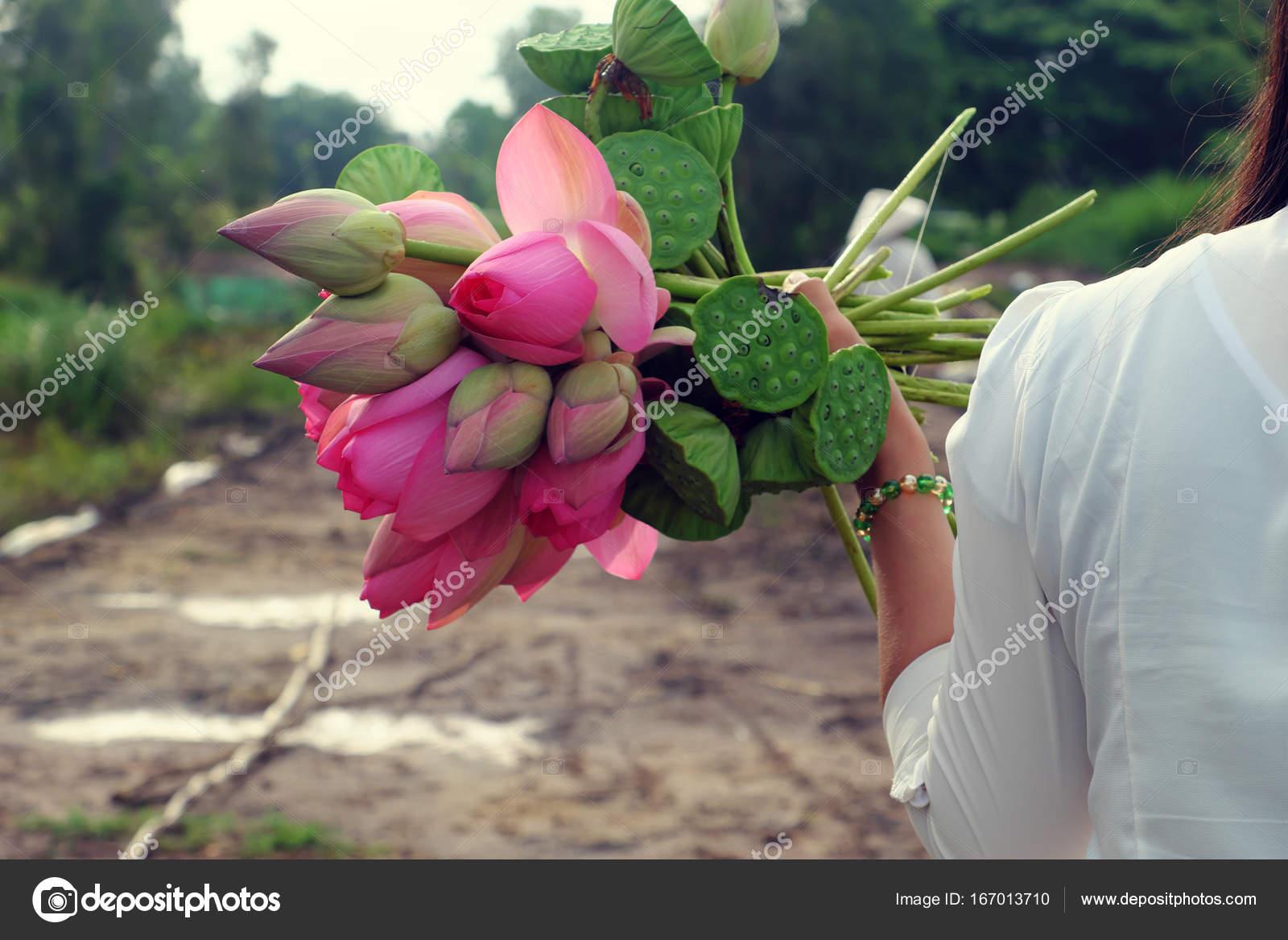 Lotus Flower Bouquet Stock Photo Xuanhuongho 167013710