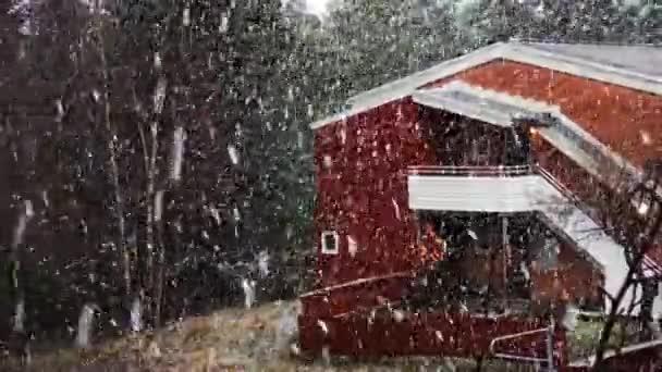 Silný sníh. Velké vločky sněhu létají. Pozadí jehličnatého lesa. Blizzard. V prosinci. Bílá zimní fotka. Vánoce.