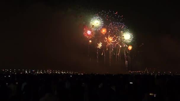 Ohňostroj na oslavu nového roku