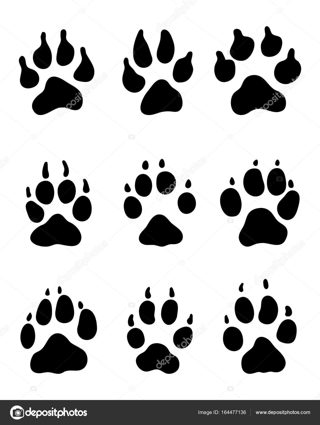 Empreinte Patte De Chien empreinte de patte de chien — image vectorielle ratkomat © #164477136