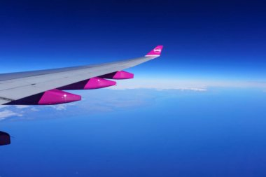 Aircraft wing with purple compartmemts
