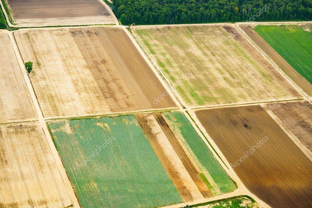 High angle view of farmland