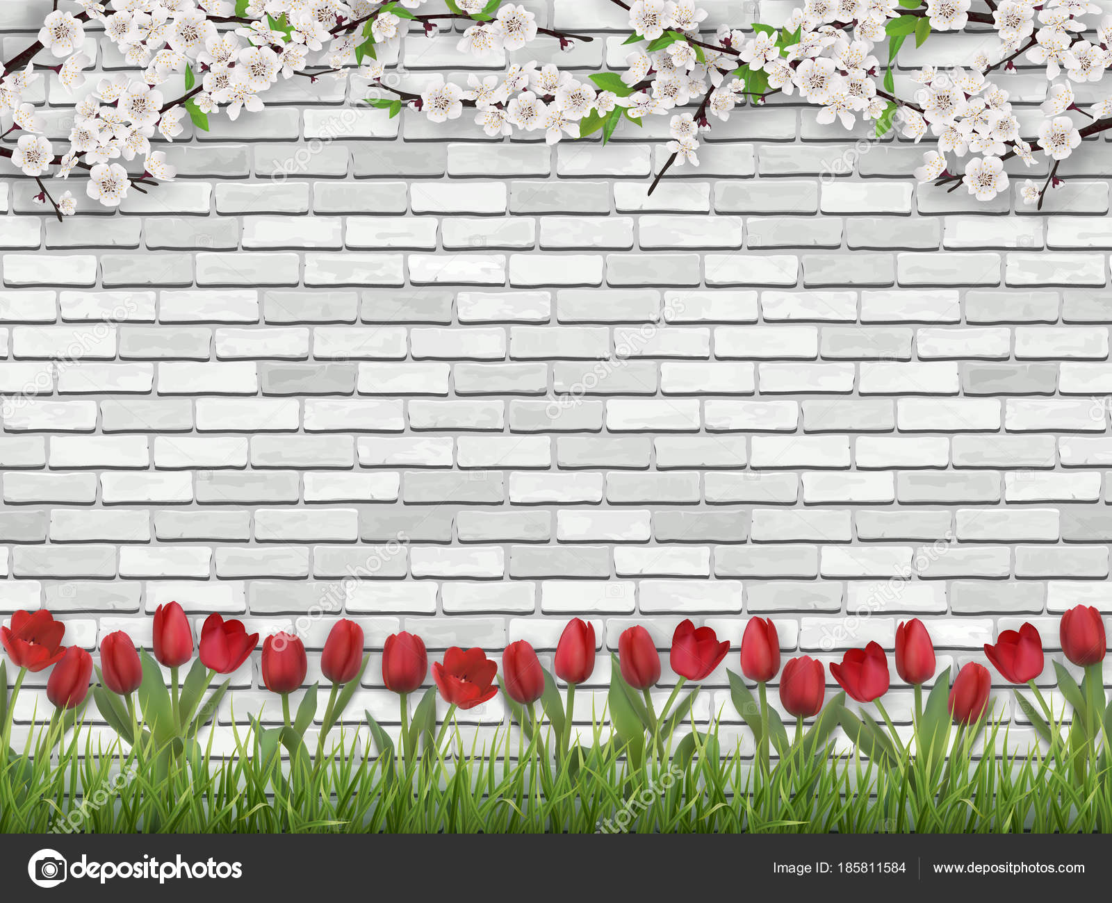 Tulips Tree Branch Grass White Brick Wall Vector Image By Belikovand Vector Stock 185811584
