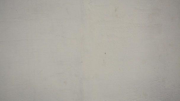 Krásné vinobraní. Abstraktní grunge dekorativní štuková stěna textura.
