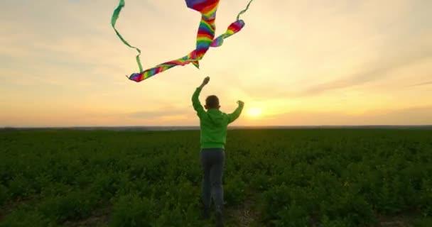 Chlapec s drakem v rukou běží přes pole. Západ slunce. 4K