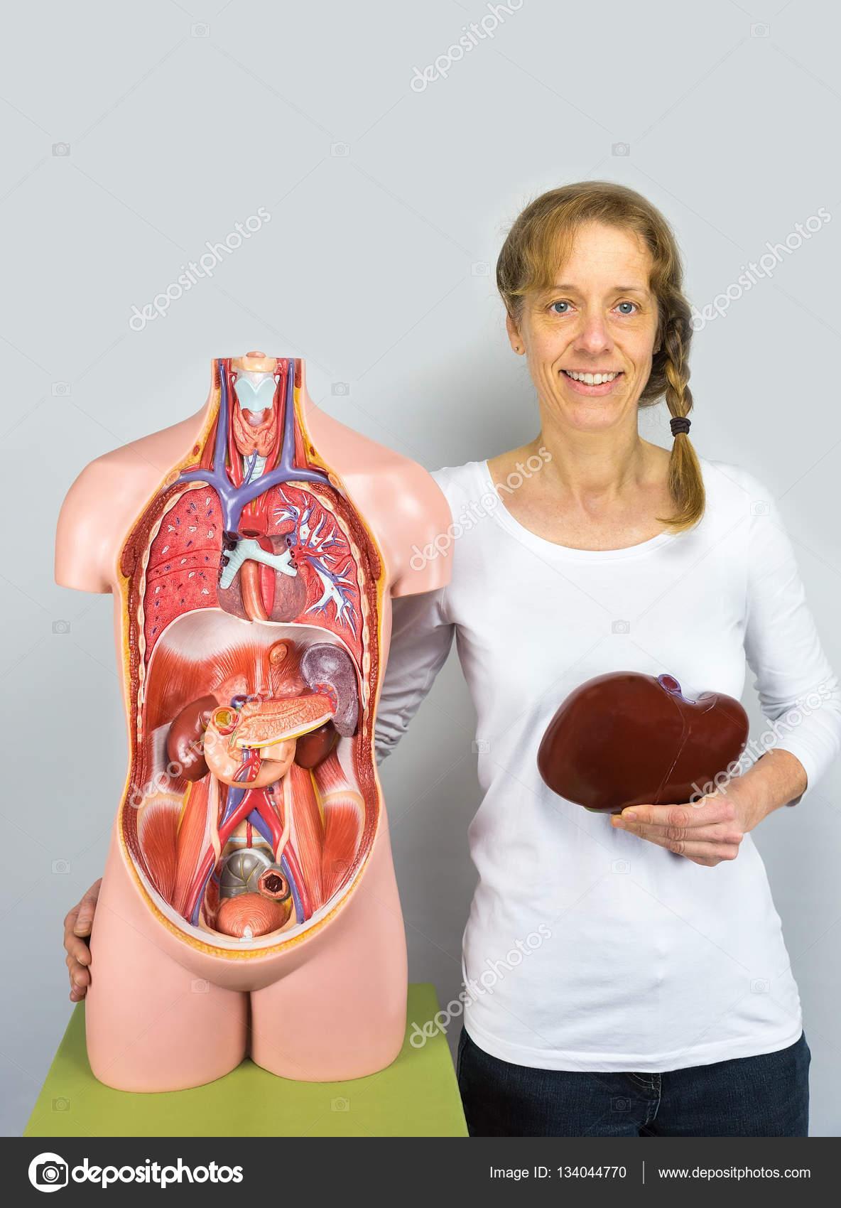 Mujer celebración de hígado en el cuerpo cerca de torso — Foto de ...