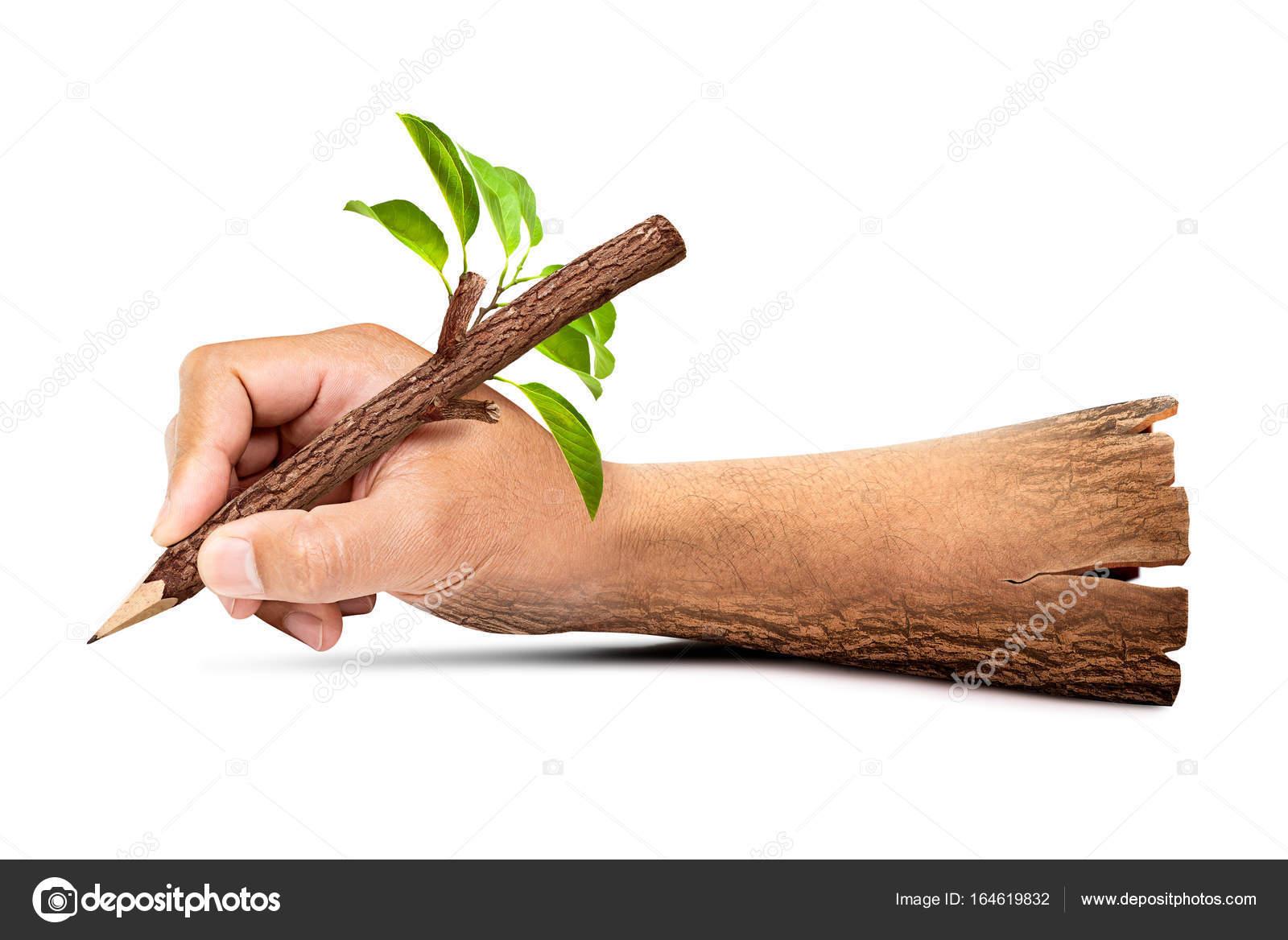 Hölzerne Hand Halten Natürliche Bleistift Stockfoto Fotoslaz