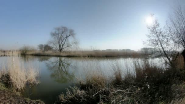 Široký úhel panoramatickým záběrem během slunečného dne na konci zimy rybníka uprostřed venkovské krajiny, s odrazem Bezlistý strom v jeho vodě, obklopený hnědé rákosí a dalšími stromy bez listí