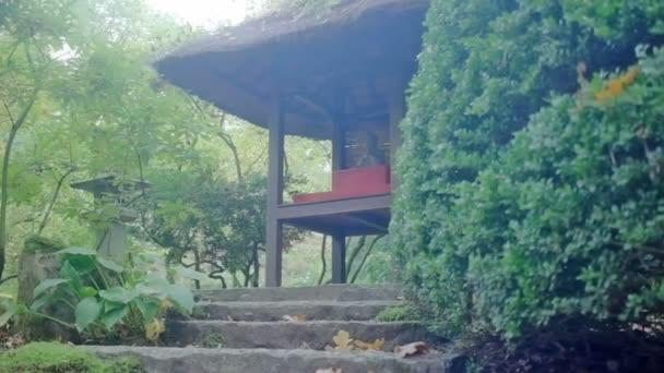 Středně široký nízký úhel malou hloubku pole sledování snímku kamene kroky vedoucí k Buddhova svatyně v japonské zahradě během zamlžené slunečného dne na podzim