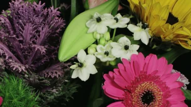 Statické střední zblízka čas zanikla záběr lilie v květu v barevné kytice různých