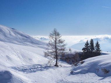 """Картина, постер, плакат, фотообои """"зимний пейзаж в итальянских альпах """", артикул 328807488"""