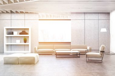 Gray living room with a white shelf, toned