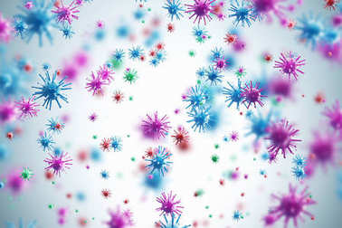 Pink and blue viruses, white background
