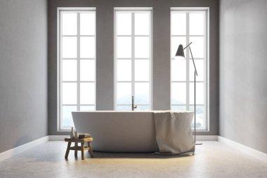 Minimalistic gray bathroom
