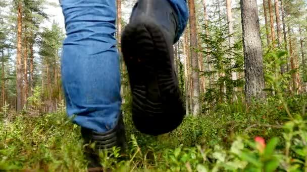 muž sběr hub v lese