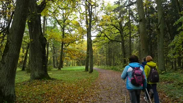 Lidé dělají na Nordic walking podzimní les