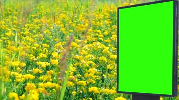 Billboard green screen in the field