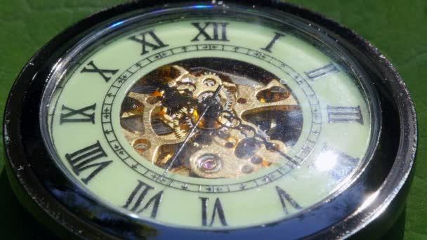Pocket watch on green moss