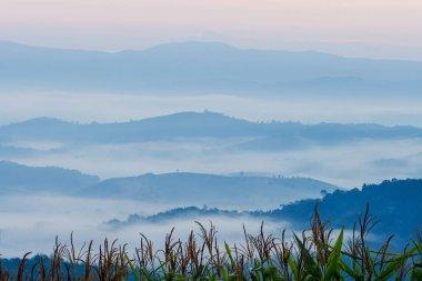 View point at Doi Sa-Ngo, Chiang Sean, Chiang Rai Province