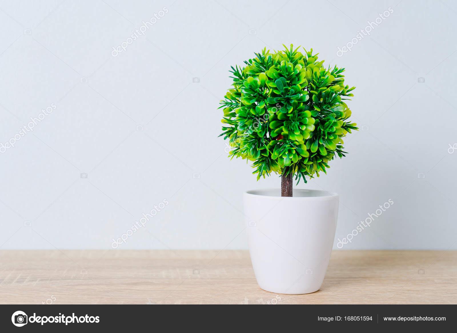 arbre décoratif en pot de fleur sur la table en bois — photographie