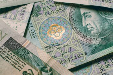 Polish currency money zloty