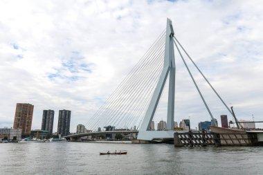 Erasmus bridge in Rotterdam harbor