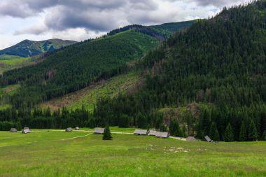 Traditional wooden huts in Tatra mountains at Dolina Chocholowska