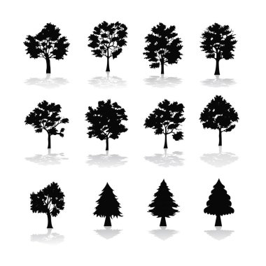 set of trees with shadows