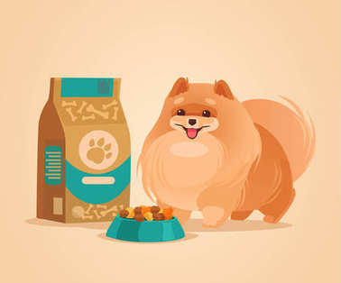 Happy smiling pomeranian spitz dog character waiting for food. Vector flat cartoon illustration