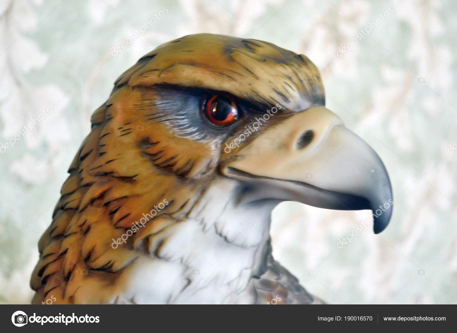Hoofd van de adelaar model interieur u2014 stockfoto © avtor hell