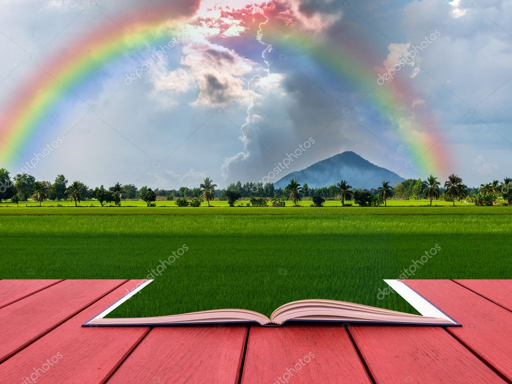 Conceptual book with Beautiful Nature View