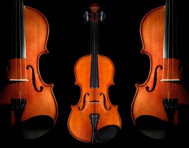 Violins orchestra musical instruments