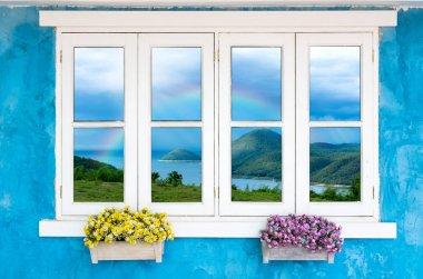 Beautiful Flowers Outside a Window