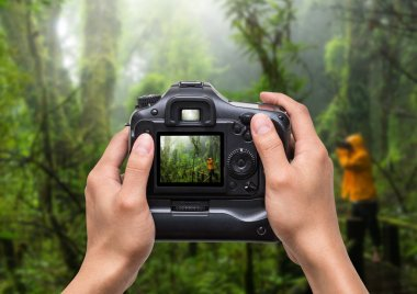 Hands holding the camera which taking photo of Traveller taking photo at Beautiful rain forest at ang ka nature trail in doi inthanon national park, Thailand stock vector