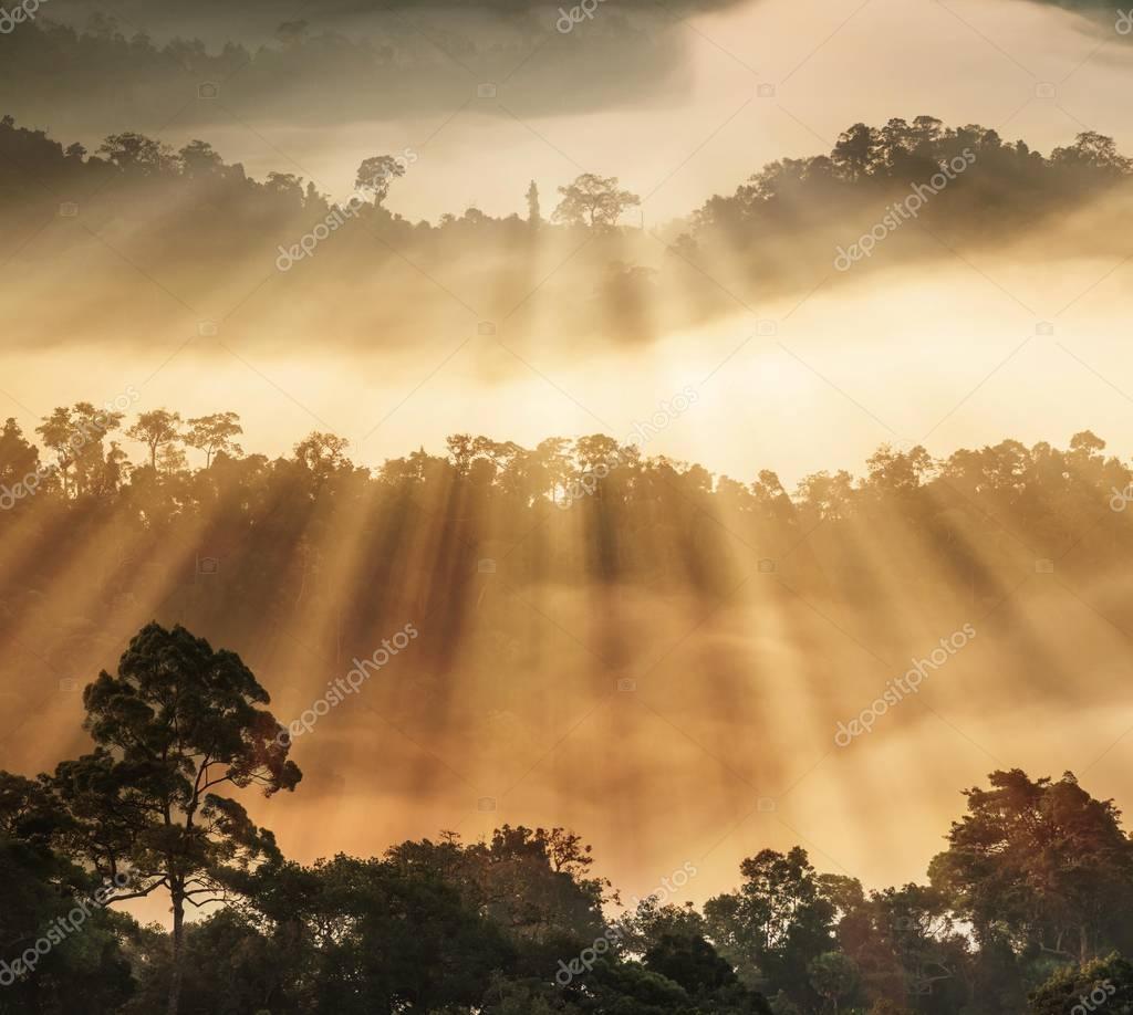 Kaeng Krachan national park,Thailand