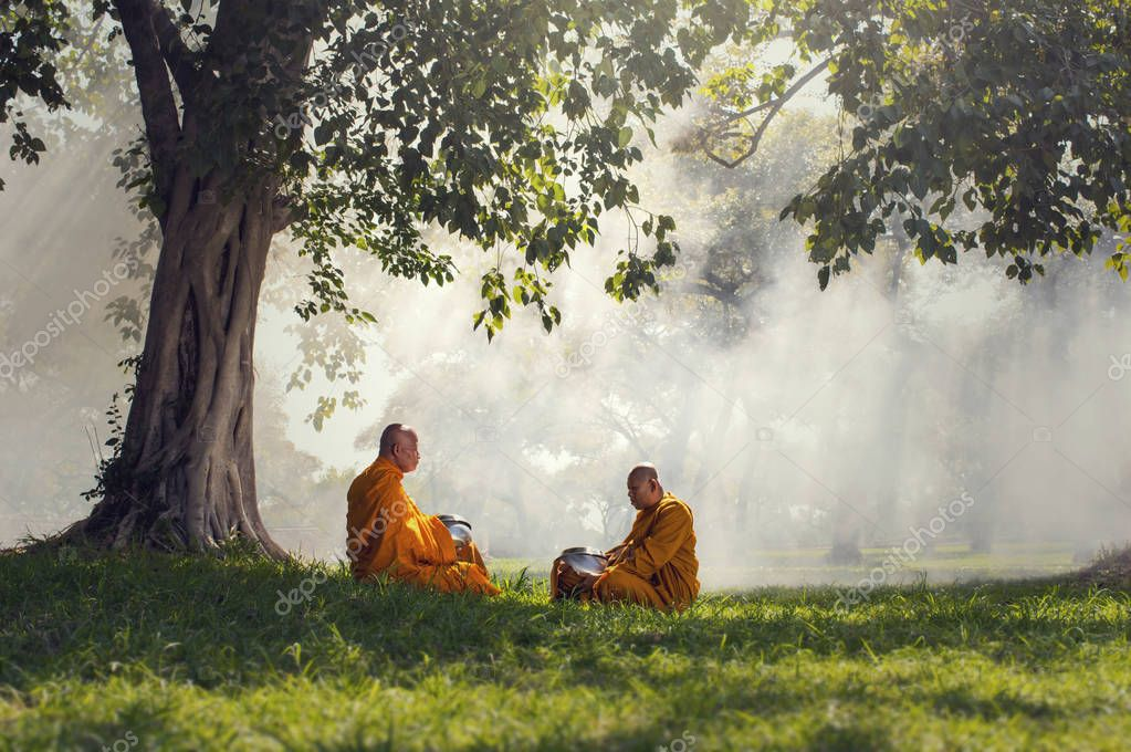 Two monks meditation under the trees