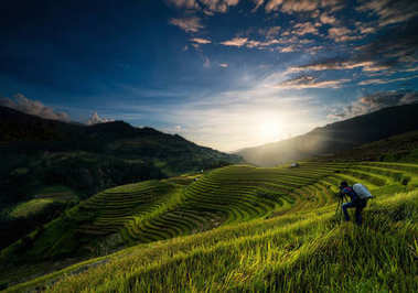 hotographer taking photo over the Rice fields