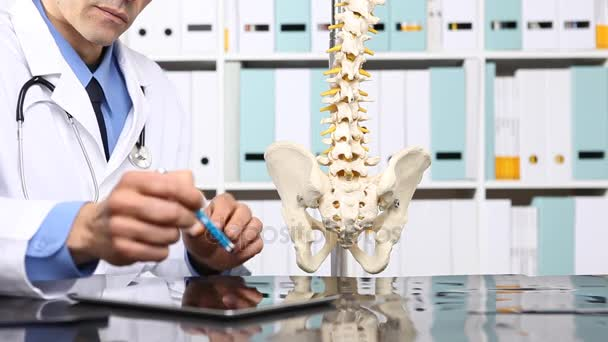 medico che controlla raggi x, medico e concetto di radiologia