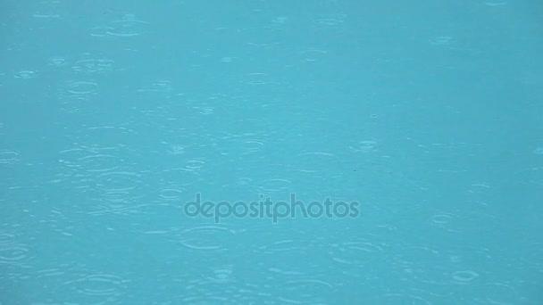 wimming fond vodní hladiny