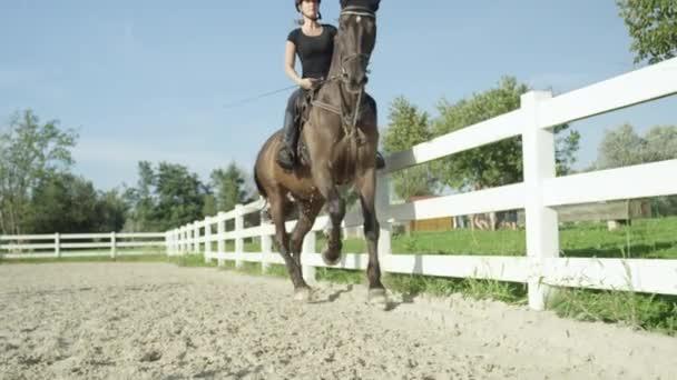 rider horseback riding