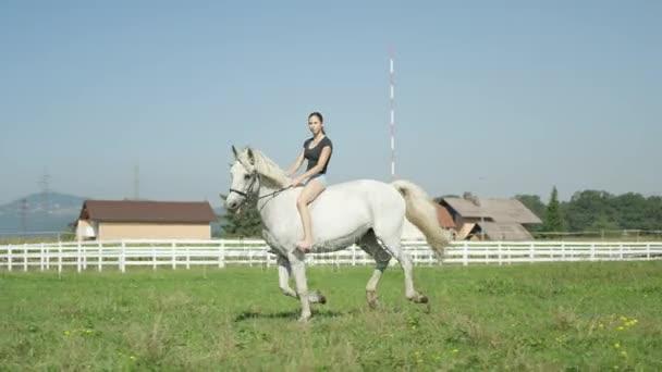 Slow Motion: Mladá žena tryskem sedla s její krásný bílý kůň