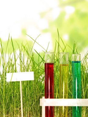 Test tubes with colored liquids in the grass on abstract green background.