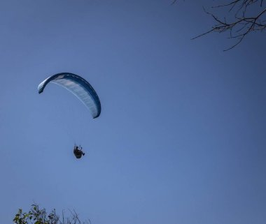 Low angle view of paragliders competing in Mooloolaba under a blue sky in Australia