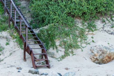 A metal staircase up the hill surrounded by green plants at the beach