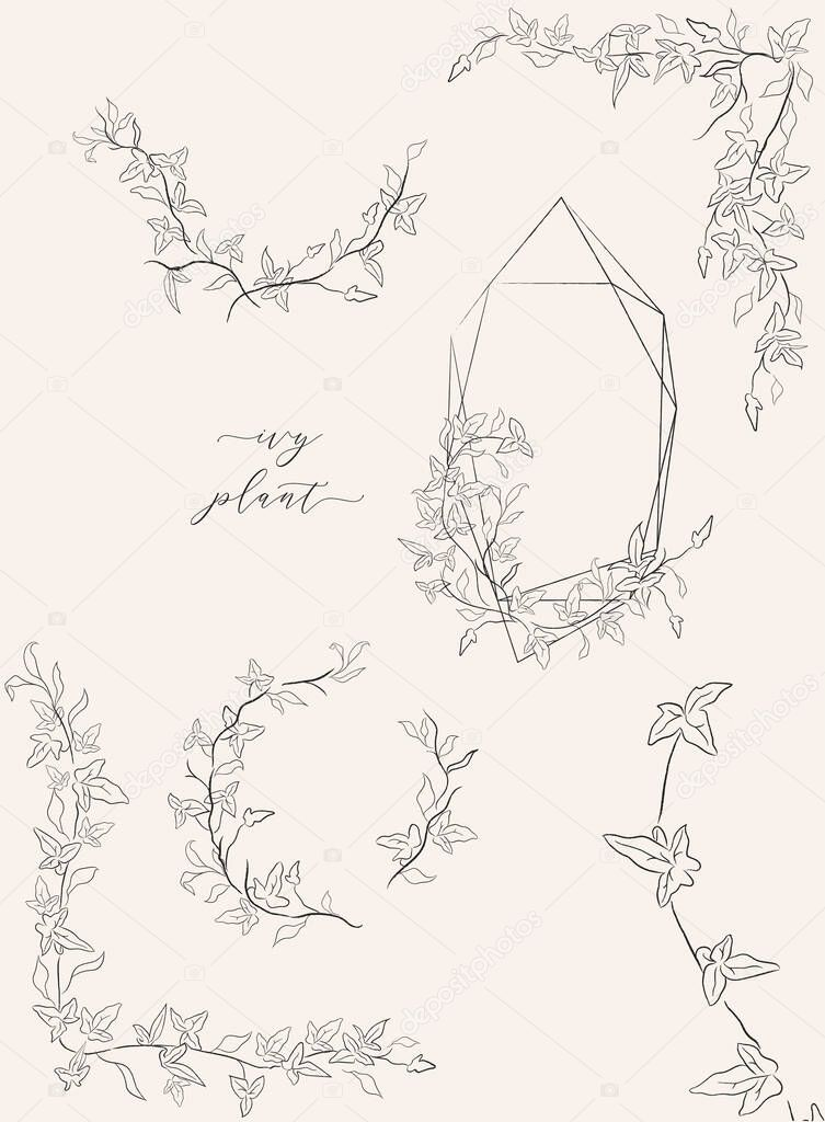 Collection Of Line Drawing Ivy Plant Vector Floral Wreaths Geometric Frame Hand Drawn Corners With Branches Leaves Plants Herbs Botanical Illustration Leaf Logo Wedding Invitation Monogram Premium Vector In Adobe Illustrator